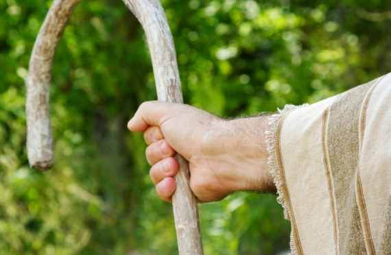 Holy Habitation: Living Continually Seated at God's Feet ~ The Shepherd's Crook, Part 2