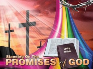 God's Promise2