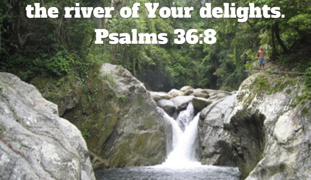 The River of God's Delights
