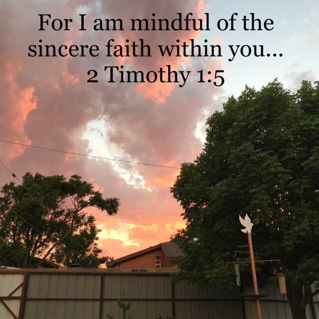 A Transforming Trip Through 2 Timothy – Part 2