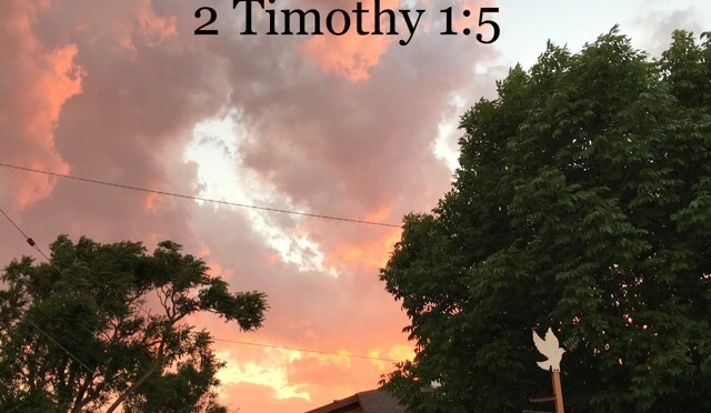 A Transforming Trip Through 2 Timothy – Part 2